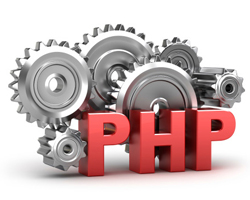 php based cms development Delhi